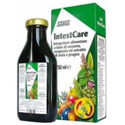 INTESTCARE 250 ML SALUS